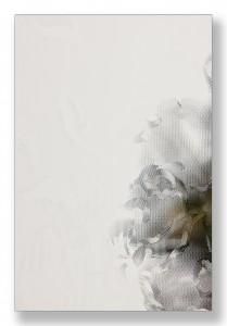 Damast blank